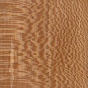 آشنایی با چوب چنار